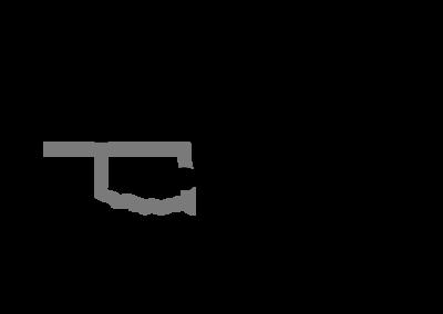 Logo Version 1 Affordable Insulation